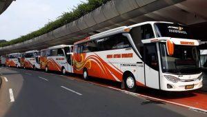 Cara Sewa Bus Pariwisata